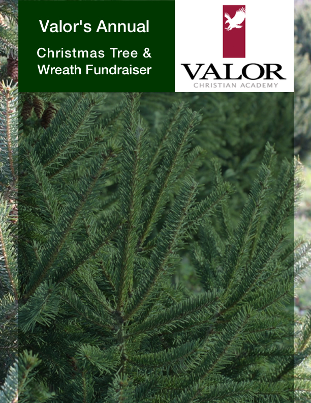 - Once again, Valor is partnering with some of the finest Christmas tree and evergreen farms in the Pacific Northwest to bring beautiful trees and wreaths to your homes this Holiday season. You have the option of picking up your trees and wreaths at Valor's campus on December 1st from 8am-12pm or you can choose to mail evergreens or a cone gift basket to family or friends by selecting the Direct Delivery items. If choosing Direct Delivery, please make sure to fully complete the Direct Delivery Shipping Label with order information. You also have the option to purchase a tree (or two) for a deserving military family. Your tax-deductible charitable contribution will help those in service to their country and their families receive a real Christmas tree and keep the spirit of a traditional Christmas celebration alive.All proceeds raised from this year's fundraiser will help with our upcoming security and campus improvements.If you have any questions, please contact us at ValorEaglesPTF@gmail.com.Thank you for your generous support and…MERRY CHRISTMAS!