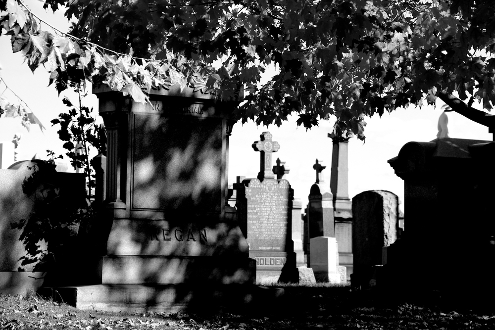 Image captured at the Calgary Cemetery in Queens, NY 2013.