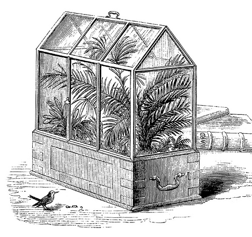 The Victorian era Wardian case.