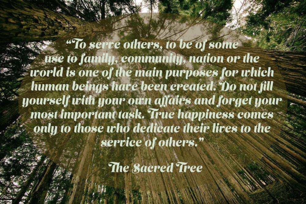 sacredtree.png