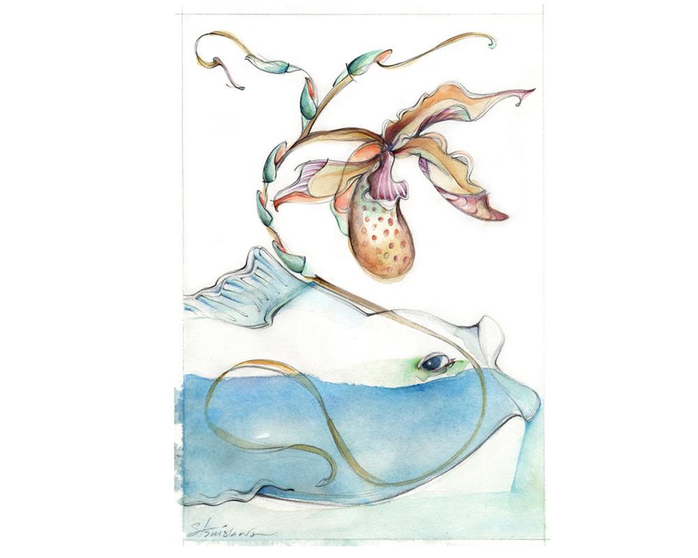 OrchidFish2_stanislawakodman1.jpg