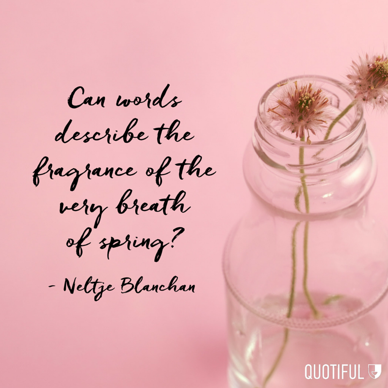 """Can words describe the fragrance of the very breath of spring?"" - Neltje Blanchan"
