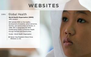 websites_2013.jpg