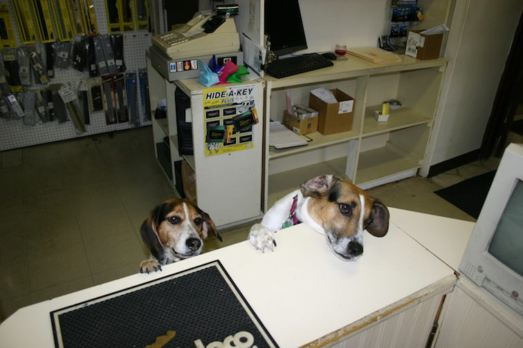 max-and-snoopy-at-counter.jpg