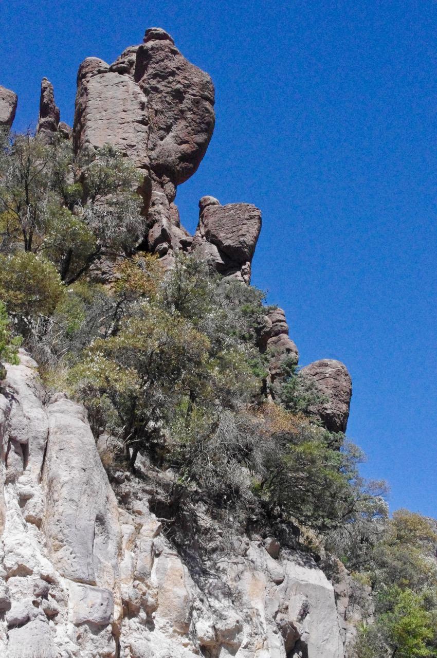 chiricahua day 2-8.jpg