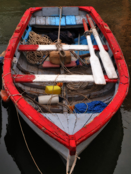 THE TRUSTY DINGHY
