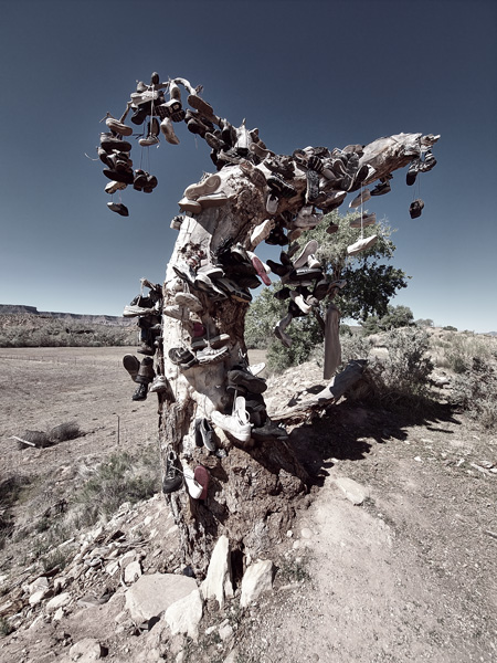 ZION SHOE TREE