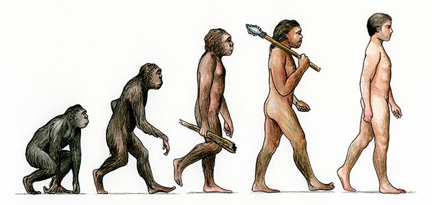 The evolution of man from http://www.smithsonianmag.com/