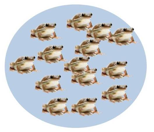 A pond full of happy frogs: A source population from which individuals emigrate.