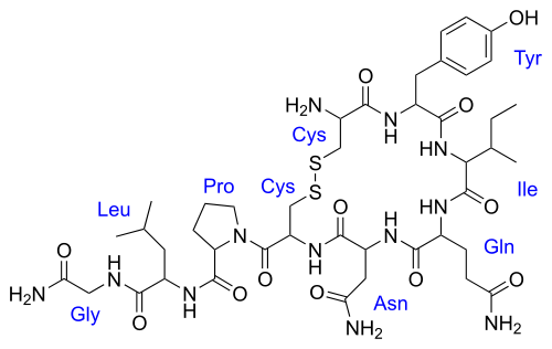 "Oxytocin: the ""love"" and ""trust"" hormone.   Oxytocin is a peptide of nine amino acids.  Photo courtesy of wikimedia.org."