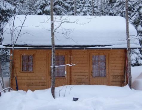 cabin-fever-475x369.jpg