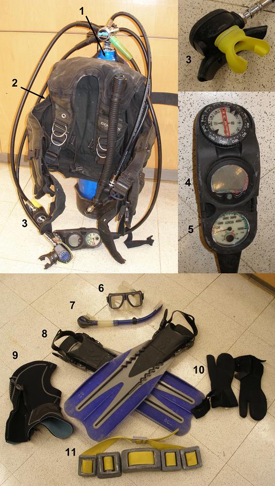 The proper equipment is essential. 1) Air Tank 2) Buoyancy Compensator 3) Regulator 4) Dive Computer 5) Pressure Gauge 6) Mask 7) Snorkel 8) Fins 9) Hood 10) Gloves 11) Weight Belt