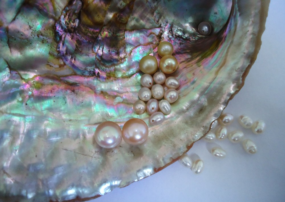 Pearls on mother of pearl.  Photo credit: Wikimedia Commons user Mauro Cateb