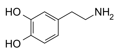 Dopamine. Photo courtesy of wikimedia,org.