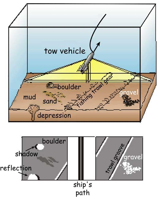 "Schematic showing how sidescan sonar scans the seafloor and creates imagery. The sonar ""looks"" out from either side of the instrument, often called a towfish, and this results in a small blind spot directly underneath the sonar.  Photo source ."