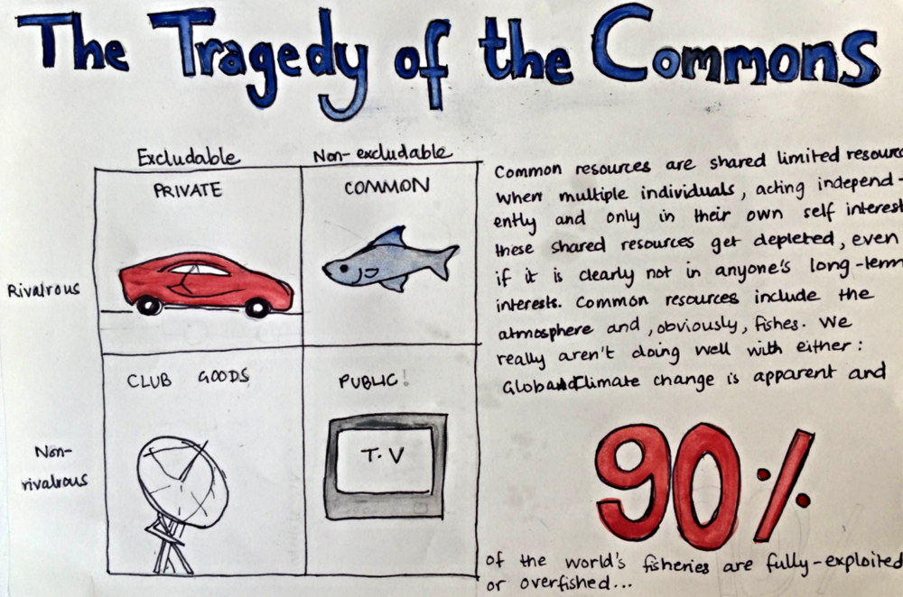 tragedy of the commons essay tragedy essay university world