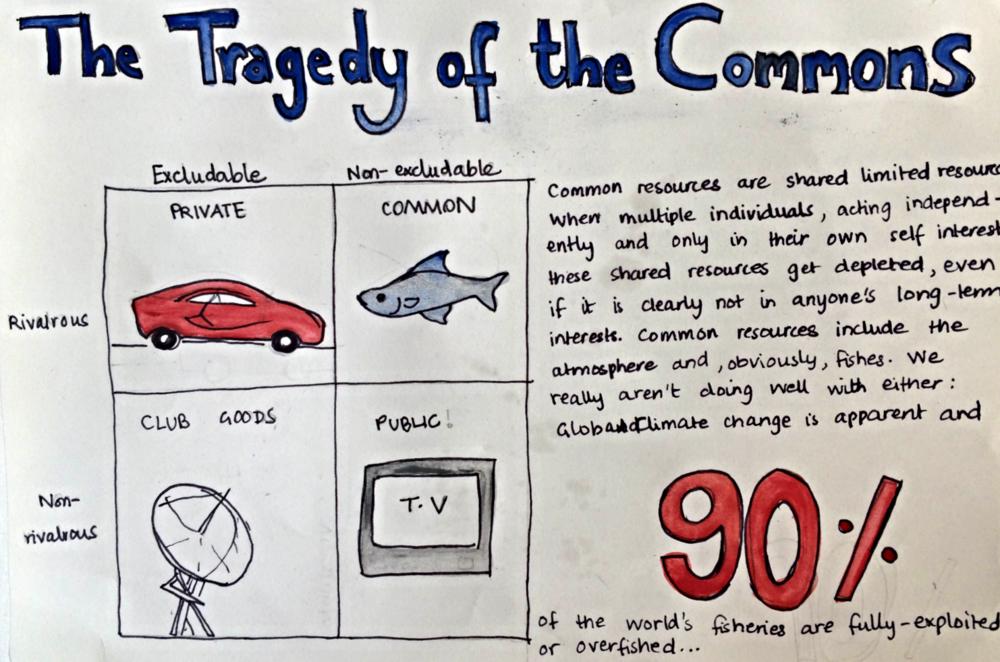 tragedy of the commons essay tragedy essay university world