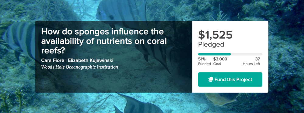 As of January 14 at 1 PM EST, the researchers have reached 51% of their goal. Head on over to the crowd-funding site,  Experiment.com , to help fund and get involved in research like this!