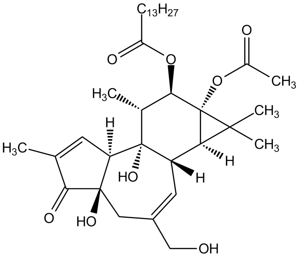 The structure of phorbol. Photo credit: AdipoGen