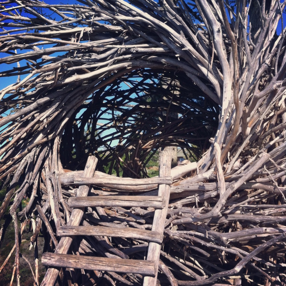 "this is the ""nest"" for the lovebirds. i'm guessing most people would only want to nest there during the summer. it's completely out in the open but with a great view of the ocean."