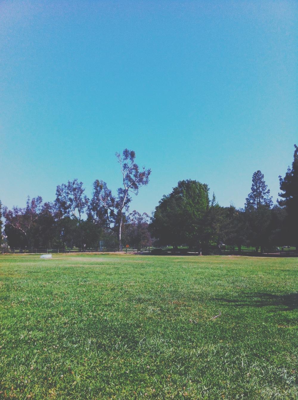 griffith park 02.JPG