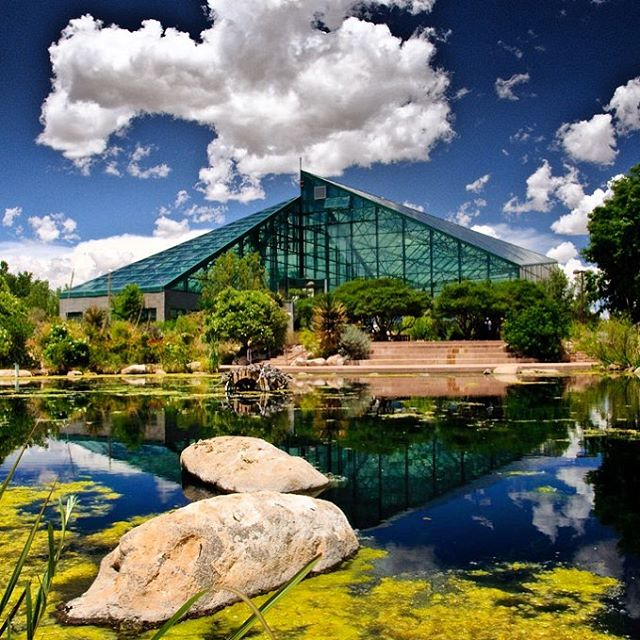 Playing here #tonight ! @abqbiopark #whataplace 👌🏼
