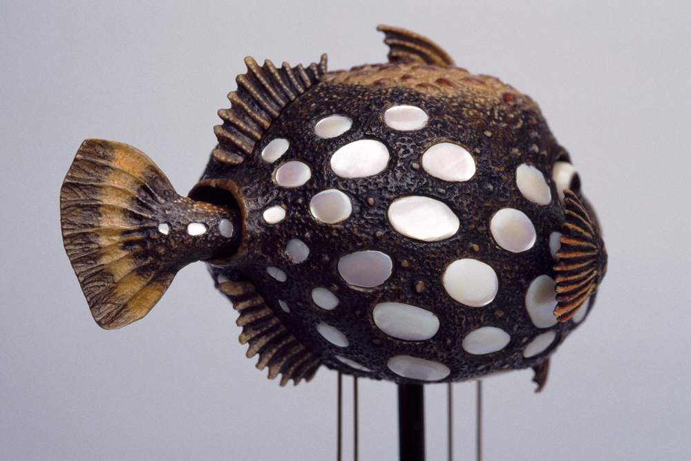 DavidBeck-TriggerFish_35mm_2_web.jpg