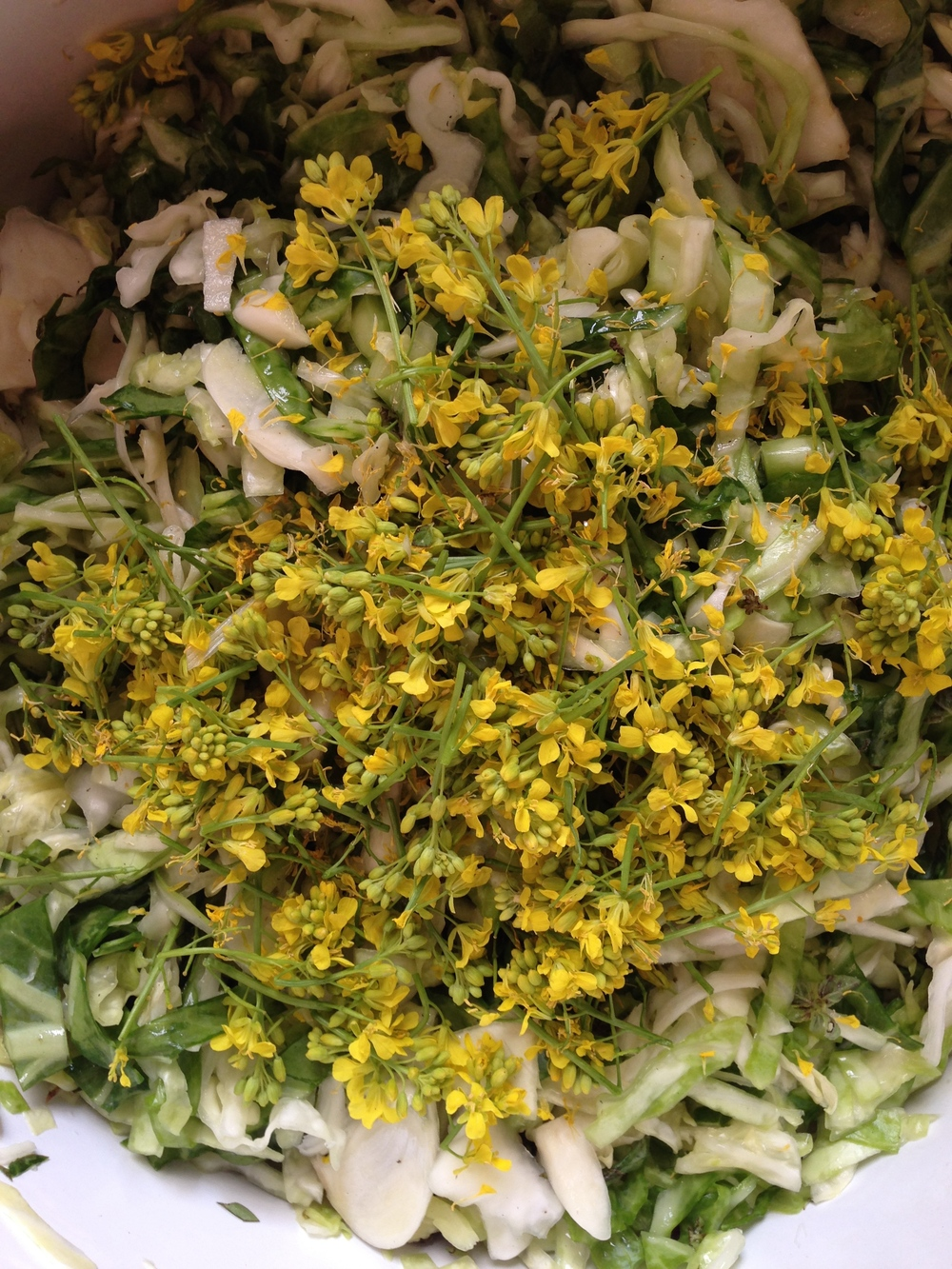 Last but not least! Top of your kraut with some beautiful mustard flowers!