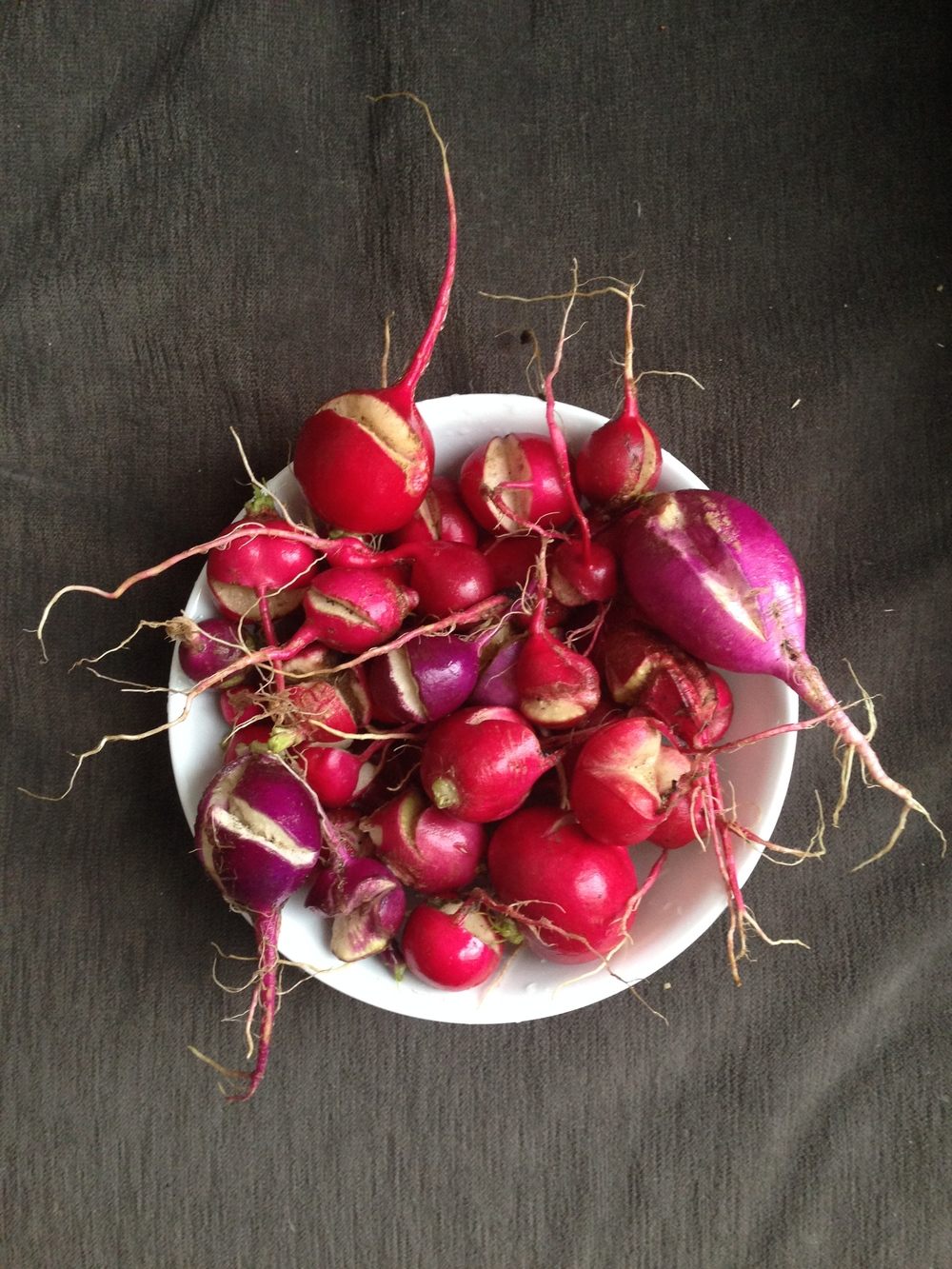 You can never have enough split radishes.....