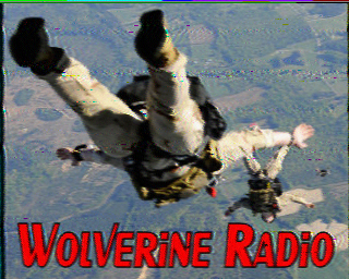 Wolverine Radio's SSTV eQSL transmitted at the end of this broadcast.