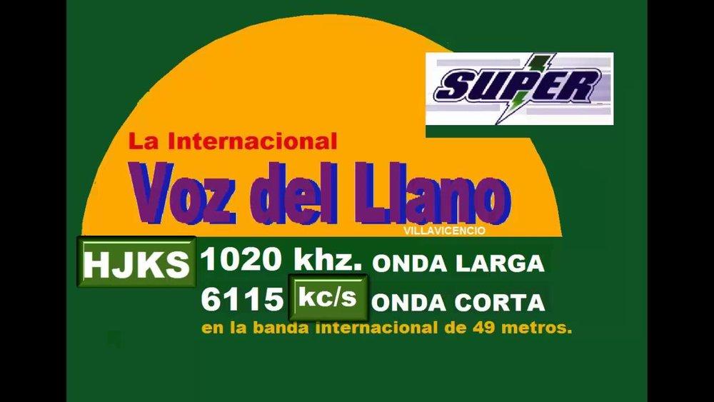 La Voz Del Llano Logo.jpg