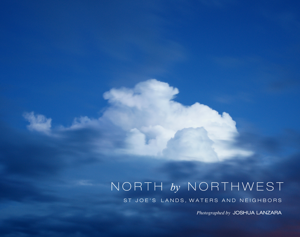 North By Northwest: The St Joe Company book