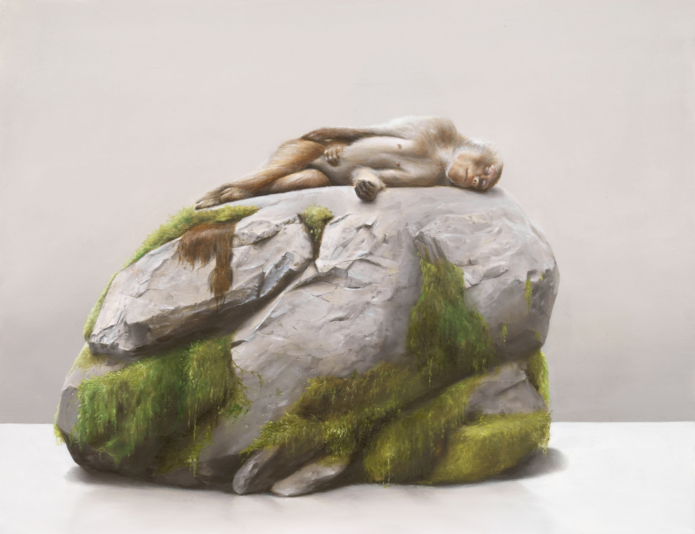 Monkey on Rock, 2016, oil and resin on wood, 40cm x 50cm