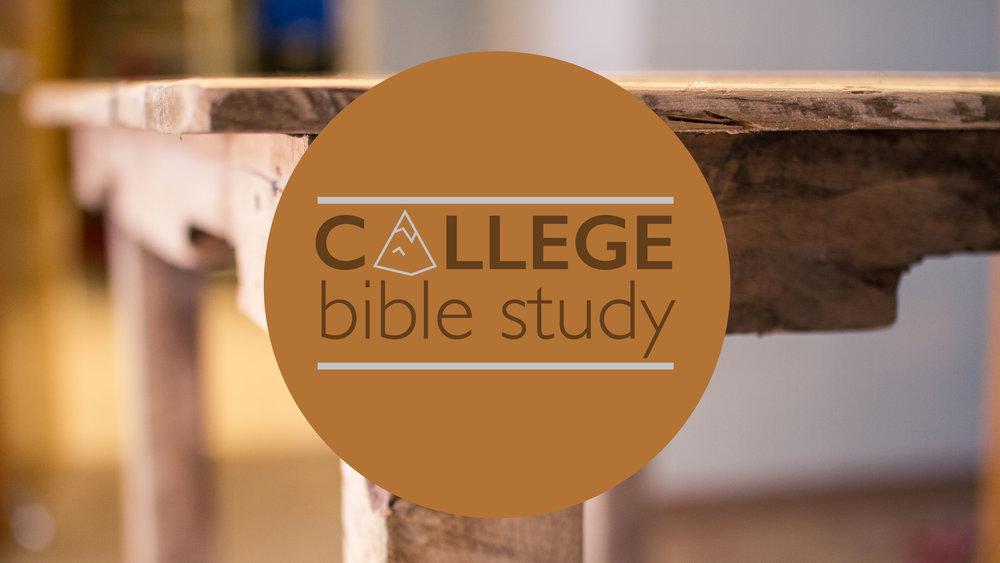 college bible study.jpg