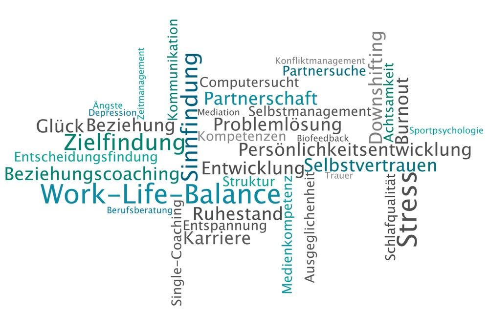 Meine Klienten bringen sehr unterschiedliche Ziele und Wünsche mit. Hier sehen Sie eine Auswahl der Schwerpunkte meiner Coachings.