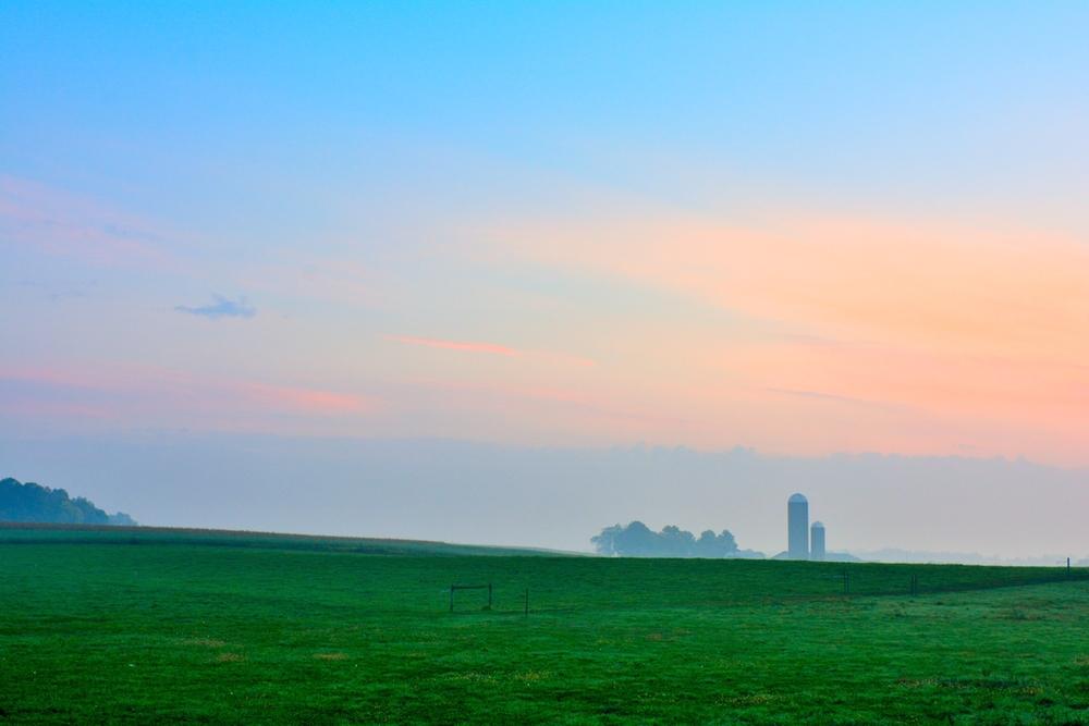 Misty Morning Farm