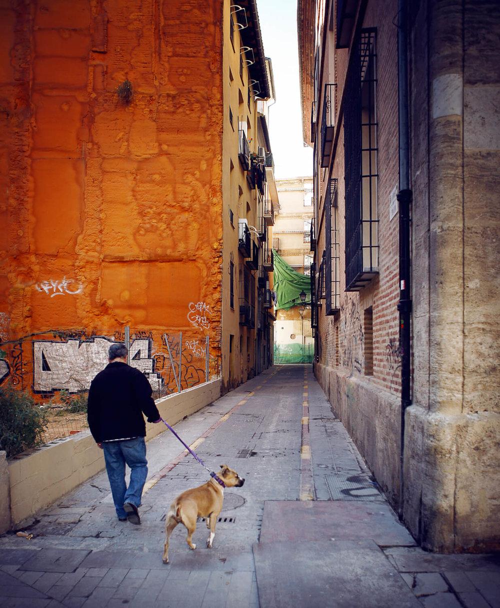 marina_notrima_valencia_05.jpg