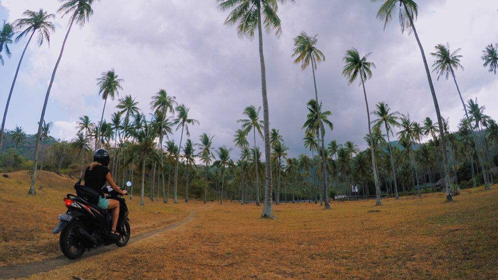 marina_lombok30.jpg