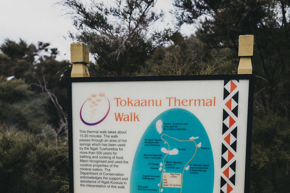 Day Three: checking out the local geothermal walk at Tokaanu (5 min drive from Pukawa Bay).