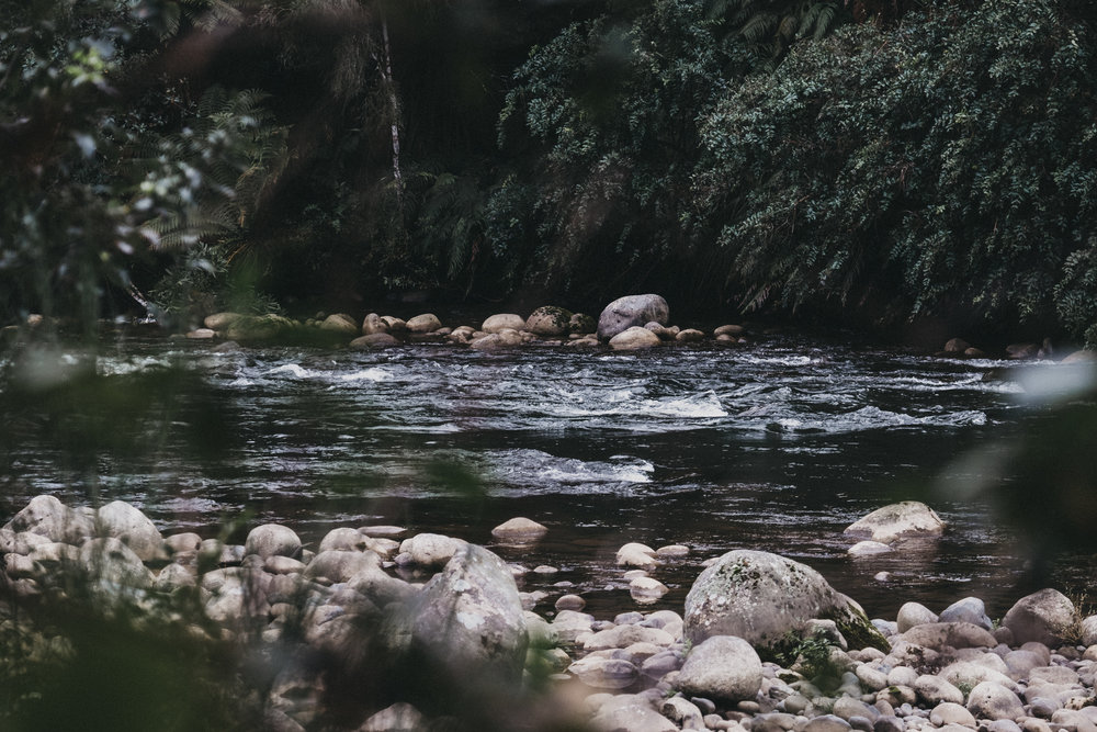 Day Five: we followed the sounds of water to find ourselves at the beautiful Ohinetonga River, photo by Nick (@nickforge).