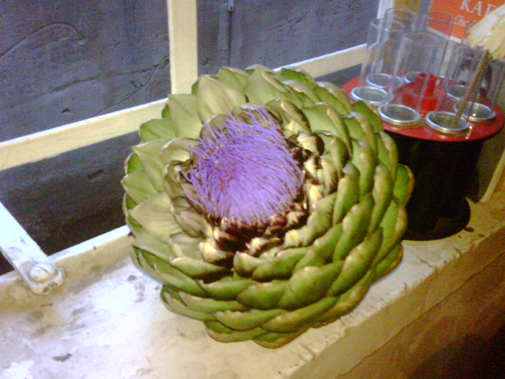 Big ass artichokes!