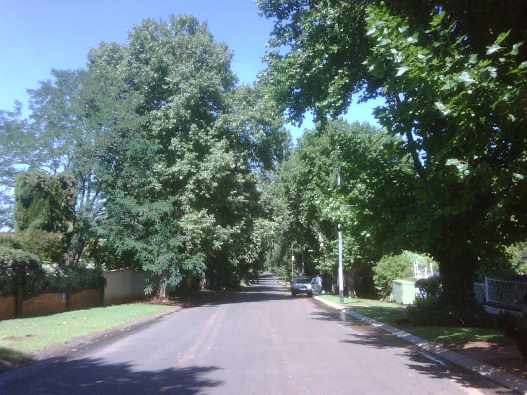 My street is a lovely street