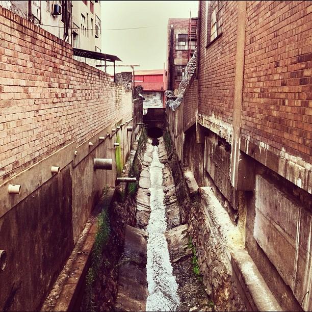 Rat City #artsonmain (Taken with  Instagram  at Arts on Main)