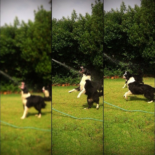 Jump! (Taken with  instagram )