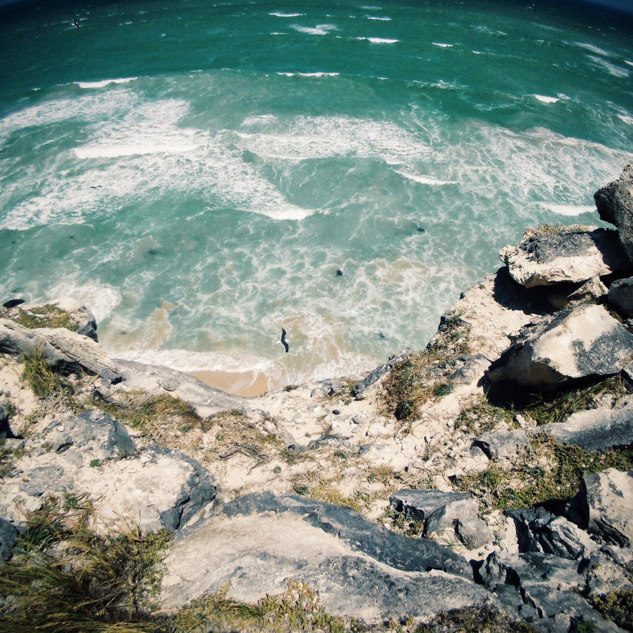 Sea Gulls & Ocean Breaks || #SummerGoesBos #CapeTown