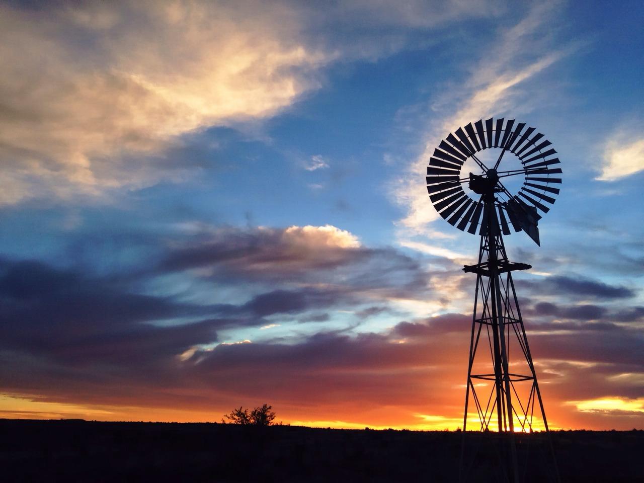 Nothing like a Karoo sunset || #karoo #sunset #southafrica #iPhoneOnly