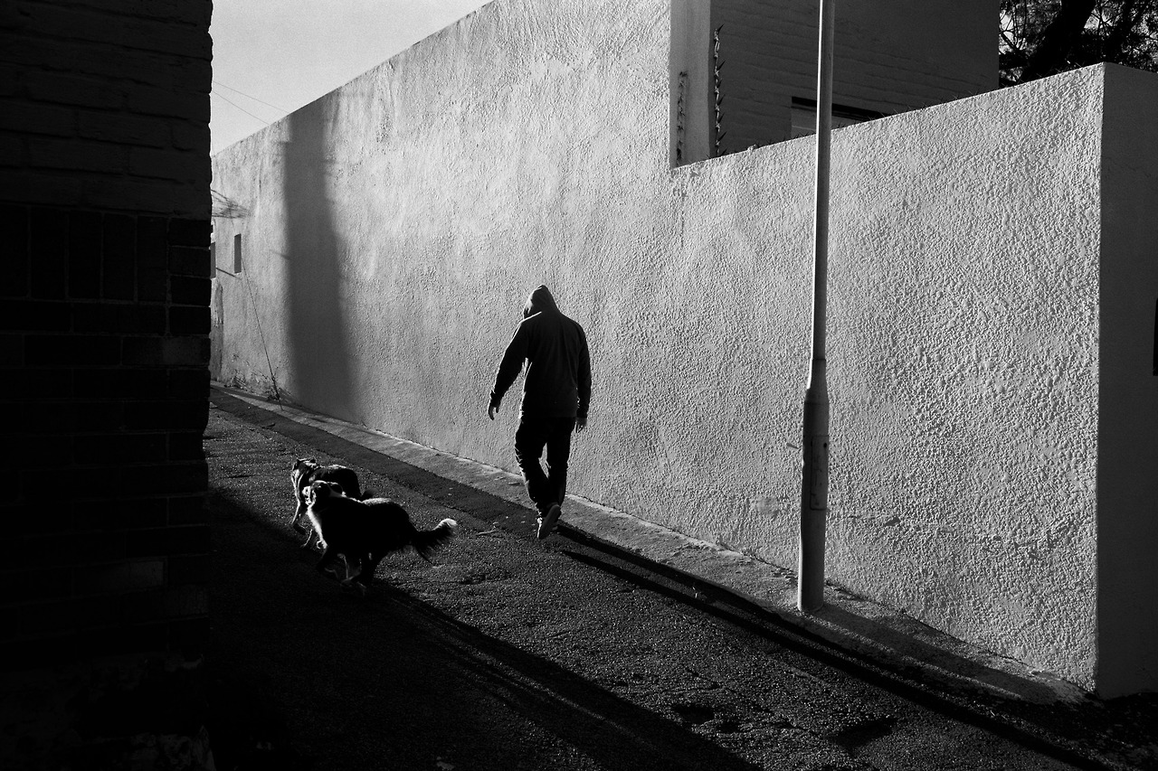 Alley Cats // Brixton // Johannesburg // 2013.            Part of my series for the @onesmallseedSA and @Levis 501® INTERPRETATION contest. Help me win by voting for my pics here, and I'll reward you in the afterlife!      http://bit.ly/ZlBnP6     // @LevistraussSA #501s           Photo: Warren Van Rensburg