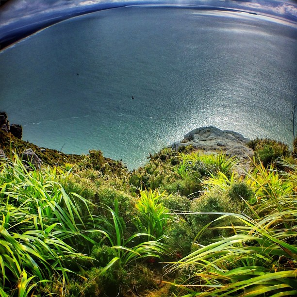 Another from up top the Mt. (Taken with  Instagram  at Mount Maunganui)
