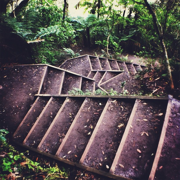 Staircase Face | Walk up & down the Mt with @agent_rabbit & @xstace_facex  (Taken with  Instagram  at Mount Maunganui)