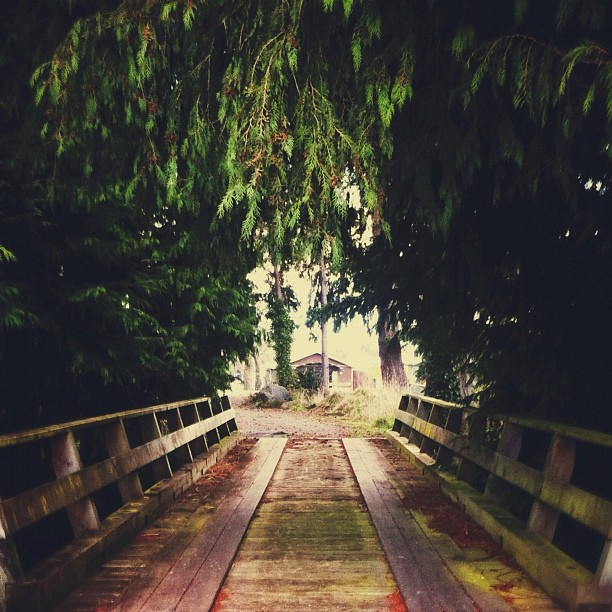 Holocene | Lights Out (Taken with  Instagram  at OCR)